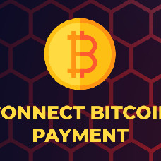 Bitcoin – Accept the most secure and foolproof currency on your site