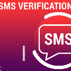 Registration SMS verification for Dating Pro