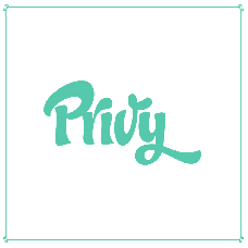 Privy integration - Reduce abandonment and grow sales